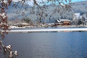 Das Maritim Hotel Titisee - Idylle direkt am See