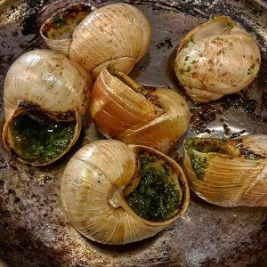 Paris - Escargots - Schnecken